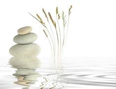 Dhara Wellness Garden - home - Terapias Vibracionales