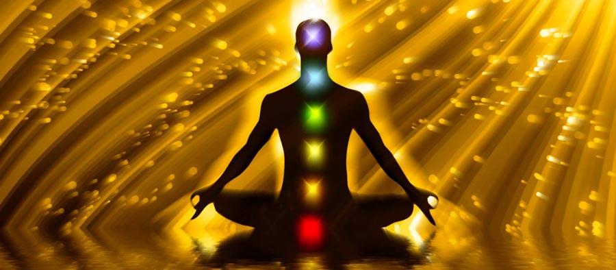 Dhara Wellness Garden - Terapias Vibracionales