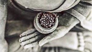 Dhara Wellness Garden - Psicología Holística